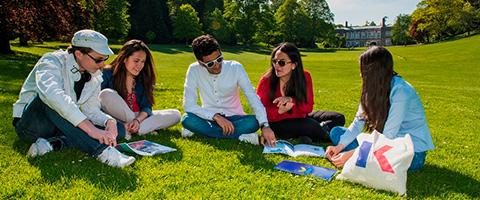élèves webstart qui révisent dans un parc herbe