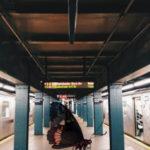 infographie papillon dans le métro animaux géants