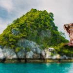 montage grenouille géante sur une ile